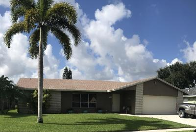 Lake Worth, Lakeworth Single Family Home For Sale: 4652 Blue Pine Circle