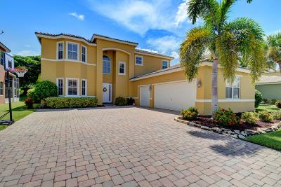 Lake Worth Single Family Home For Sale: 6248 C Durham Drive