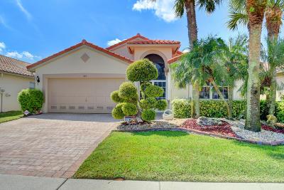 Boynton Beach Single Family Home For Sale: 7165 Haviland Circle