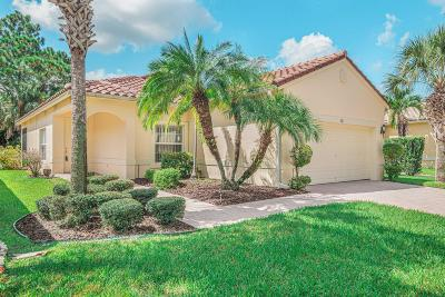Single Family Home For Sale: 321 NW Treeline Trace