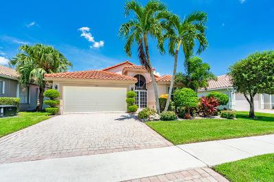 Boynton Beach Single Family Home For Sale: 7393 Haviland Circle