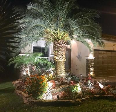 Delray Beach Single Family Home For Sale: 14855 Rapolla Drive