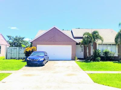 Royal Palm Beach Single Family Home For Sale: 1101 Grandview Circle
