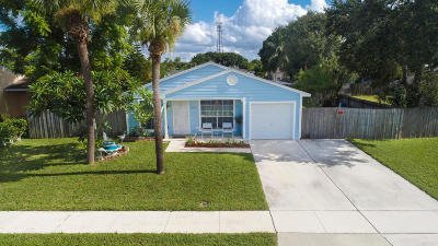 Royal Palm Beach Single Family Home For Sale: 10117 Pinafore Lane