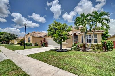 Boynton Beach Single Family Home For Sale: 9441 Lago Drive