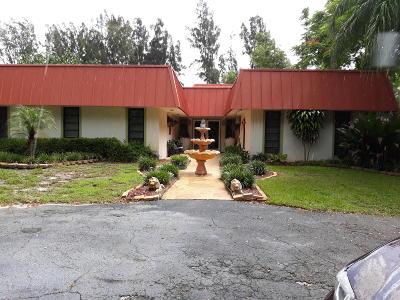Boynton Beach Single Family Home For Sale: 3771 S 71st Avenue S