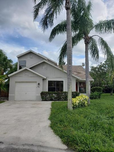 Boynton Beach Single Family Home For Sale: 87 Magnolia Circle