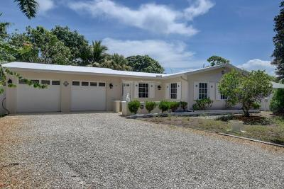 Delray Beach Single Family Home For Sale: 12 Eastview Avenue