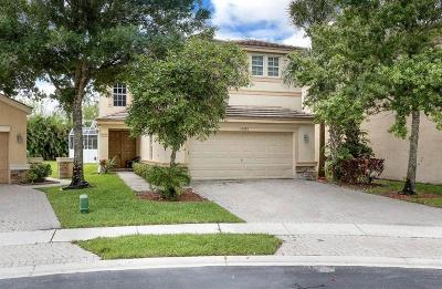Lake Worth Single Family Home For Sale: 10286 Little Mustang Way