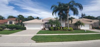Boynton Beach Single Family Home For Auction: 6714 Jog Palm Drive