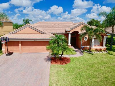Stuart Single Family Home Contingent: 2177 SW Panther Trace