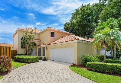 Palm Beach Gardens Single Family Home For Sale: 13160 Crisa Drive