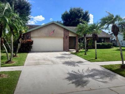 Royal Palm Beach Single Family Home For Sale: 364 La Mancha Avenue