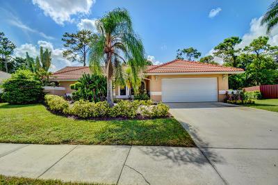 Boca Raton Single Family Home For Sale: 22311 Martella Avenue