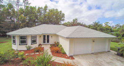 Loxahatchee Single Family Home For Sale: 16356 E Burns Drive