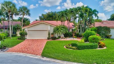 Boynton Beach Single Family Home For Sale: 5539 Lakeview Mews Terrace