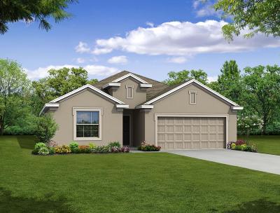 Port Saint Lucie Single Family Home For Sale: 1198 SW Fargo Avenue