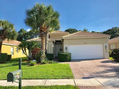 Boynton Beach Single Family Home For Sale: 6623 Southport Drive