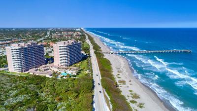Juno Beach Condo For Sale: 750 Ocean Royale #703