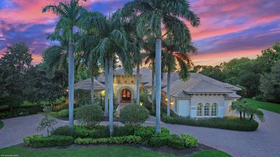 Palm Beach Gardens Single Family Home For Sale: 13281 Oakmeade