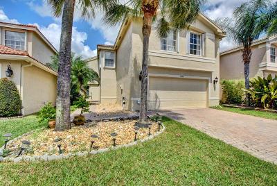 Greenacres Single Family Home For Sale: 5095 Starblaze Drive