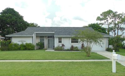 Delray Beach Single Family Home For Sale: 14651 Hideaway Lake Lane