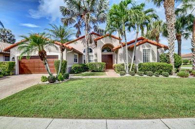 Boynton Beach Single Family Home For Sale: 6924 Chimere Terrace