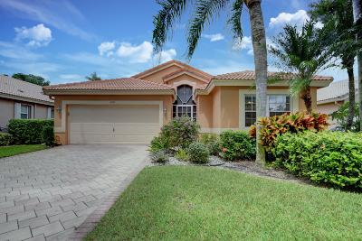 Boynton Beach Single Family Home For Sale: 6789 Sun River Road