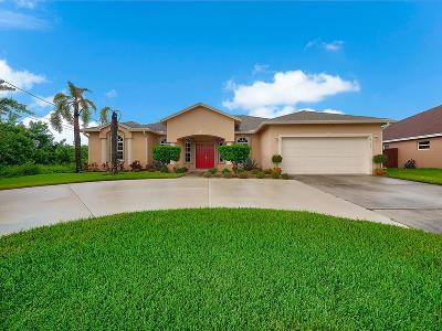 Port Saint Lucie Single Family Home For Sale: 4162 SW Ragen Street