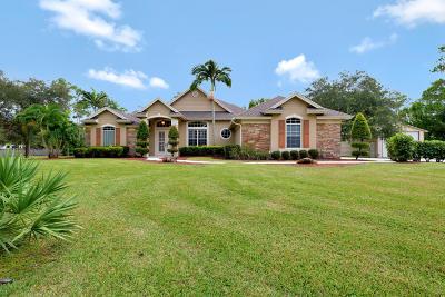 Jupiter Single Family Home For Sale: 15663 Mellen Lane