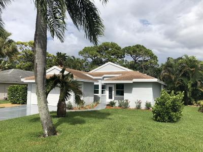Palm Beach Gardens Single Family Home For Sale: 6081 Brandon Street