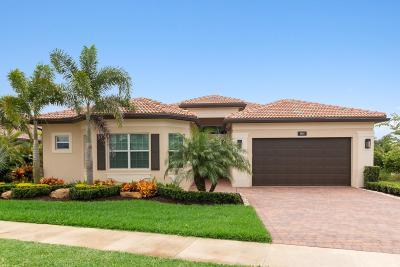 Boynton Beach Single Family Home For Sale: 8880 Golden Mountain Circle