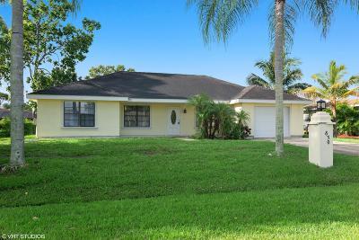 Port Saint Lucie Single Family Home For Sale: 830 SE Carnival Avenue