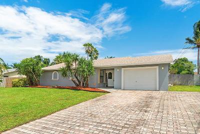 Lake Worth Single Family Home For Sale: 6928 Paul Mar Drive