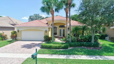 Lake Worth Single Family Home For Sale: 6866 Milani Street