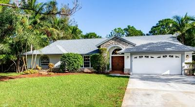 Palm Beach Gardens Single Family Home For Sale: 7253 154th Court