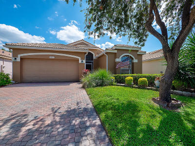 Boynton Beach Single Family Home For Sale: 6930 Camille Street