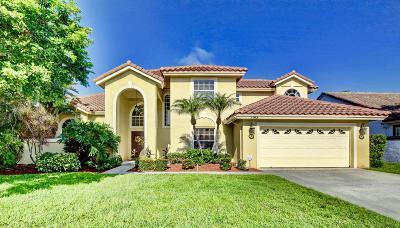 Wellington Single Family Home For Sale: 1143 Lake Breeze Drive
