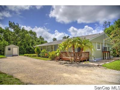 Sanibel Single Family Home For Sale: 982 Main St