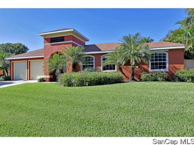 Fort Myers Single Family Home For Sale: 1351 Hopedale Dr