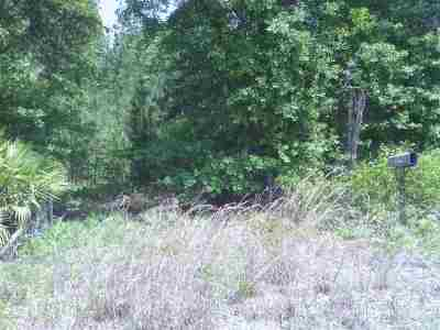 Palatka FL Residential Lots & Land For Sale: $28,950