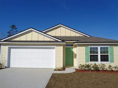 St Augustine Single Family Home For Sale: 294 Sweet Mango Trail
