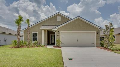 St Augustine Single Family Home For Sale: 195 Palace Drive