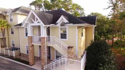 Condo For Sale: N 345 Shore #1227
