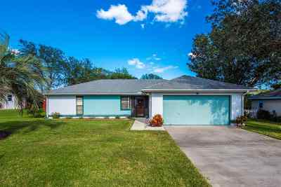 St Augustine Single Family Home For Sale: 687 Bahia Drive