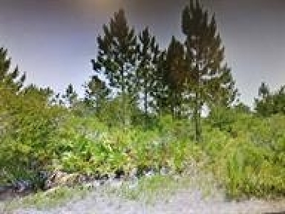 Residential Lots & Land Contingent: 22 Piitman