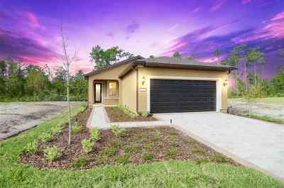Ponte Vedra Single Family Home For Sale: 61 Covered Creek Drive