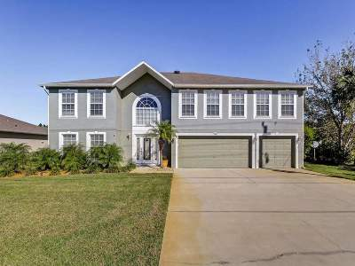 Palm Coast Single Family Home For Sale: 220 Bird Of Paradise Dr