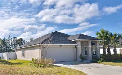 St Augustine Single Family Home For Sale: 168 Ferris Dr.