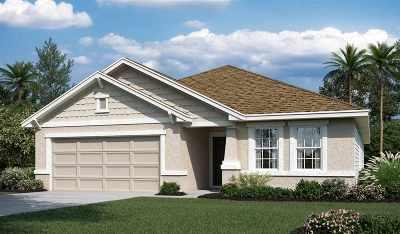Saint Johns County Single Family Home For Sale: 48 Basalt Dr